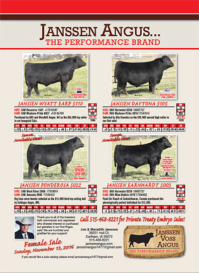 Angus Production Sale - February 20, 2016